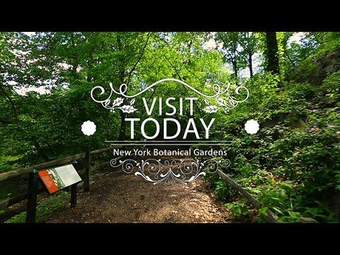 Botanical Gardens of New York City