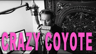 CRAZY COYOTE_SouthAmerican Music