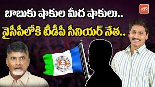 TDP Leaders are Going To Join in YSRCP | Chandrababu | YS Jagan | AP Latest News