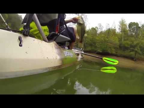 "One Fish, Many GoPros: EPISODE 4, ""Topwater Smash"""