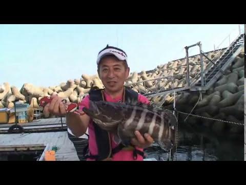 海上釣掘 田尻ポートで、シマアジ&マダイ快釣(前半)
