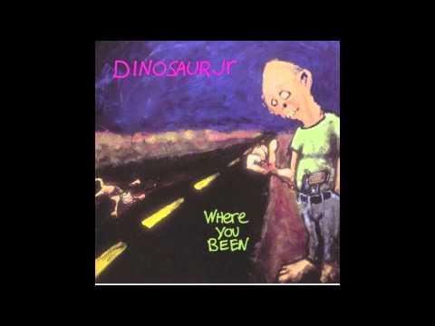 Dinosaur Jr - Not The Same