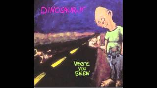 Watch Dinosaur Jr Not The Same video