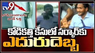 Jagan attack case: HC rejects government's House Motion petition