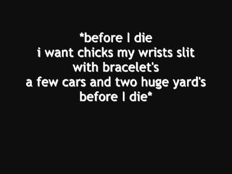 Professor Green - Before I Die (LYRICS!)