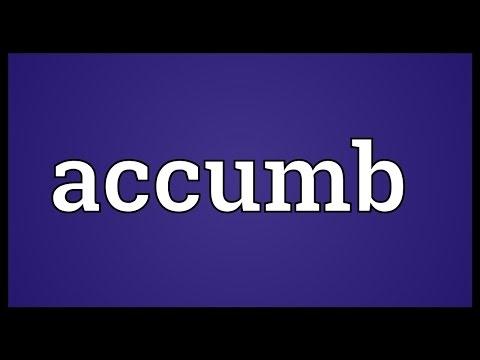 Header of Accumb