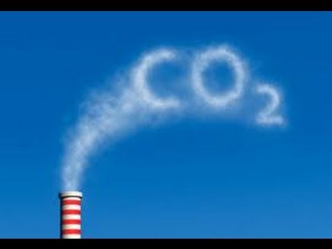 Netherlands climate policy researcher Michel den Elzen joined World View with Denis Campbell to discuss his recent paper showing a 50% decrease in CO2 emissi...