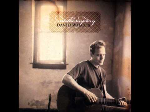 David Wilcox - Native Tongue