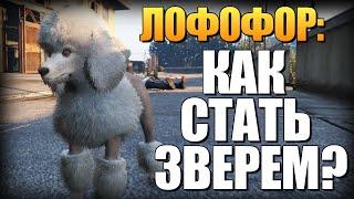 GTA 5 - Как Играть за Животных? (Лофофоры) #1