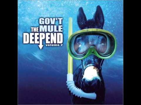 Govt Mule - Rockin Horse
