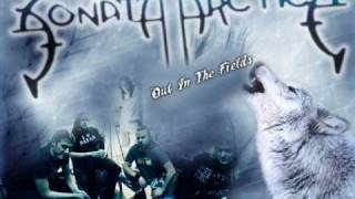 Watch Sonata Arctica Out In The Fields video