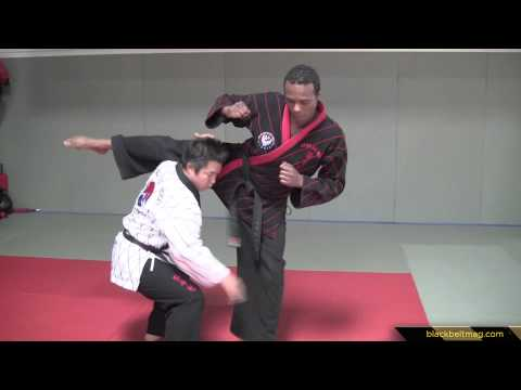 Hapkido Techniques vs Close-Range  Roundhouse Kicks Demonstrated by Han Woong Kim Image 1