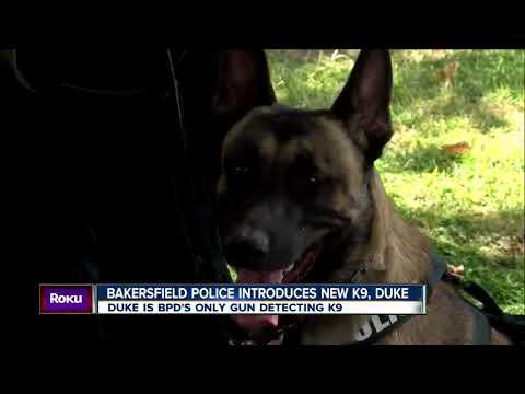 23ABC News Latest Headlines | August 24, 6pm
