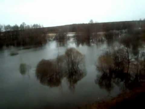 прогноз клева на москва реке в воскресенске