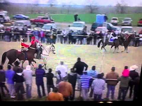 Carreras de caballos en dallas tx