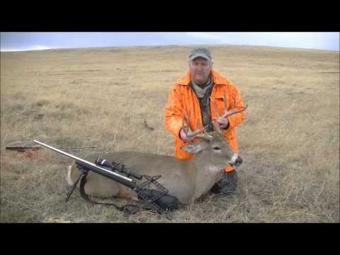 Long Range Hunting. 608 Yard Whitetail Buck