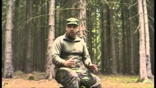 Napadení divočákem, medvědem a vlkem - teorie (Assault boar, bear and wolf - theory)