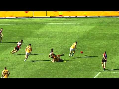 Rhys Woods (Eagles) Round 5 Powerade Star Search Nominee