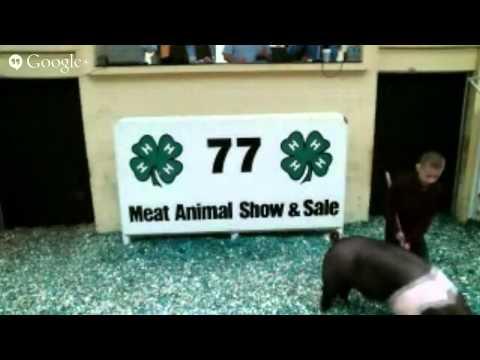 Eastern Carolina 4-H Livestock Sale