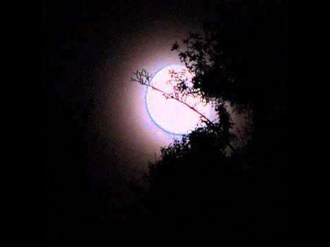 John Renbourn - The Moon Shines Bright