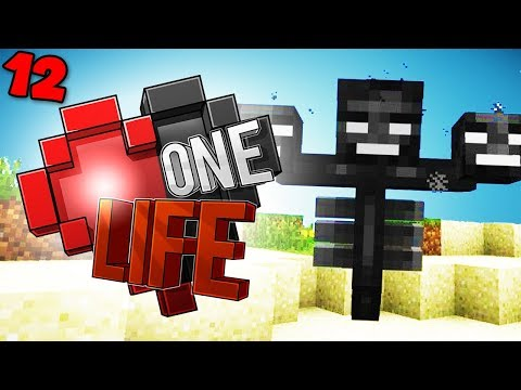 I tried to kill the Wither.. - Minecraft One Life SMP EP12