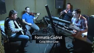 Formatia Codrut - Colaj Bihor Live