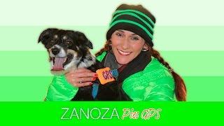 Zanoza - Pies GPS