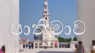 Tour in Fatima