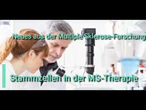 """""""Stammzellen in der MS-Therapie"""" - Neues aus der Multiple Sklerose-Forschung"""