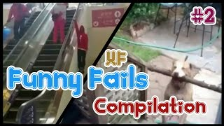 ● Funny Fails Compilation | Funny animal fails | Pets and animalfails Videos ☆