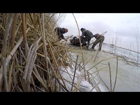 Зимняя рыбалка на крупного окуня. 27.01.2018.