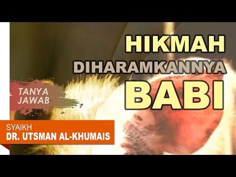 Tanya Jawab: Hikmah Diharamkannya Babi - Oleh Syaikh Dr. Utsman Al Khumais