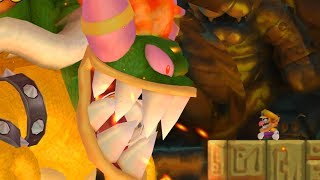 Bowser's Woman in New Super Mario Bros. Wii
