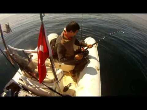 как морская рыбалка в турции
