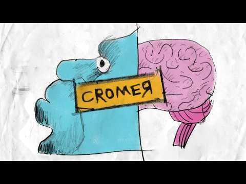 Brad Cromer : Let's Skate Dude (LSD)