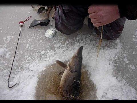 рыбалка в криуше рязанской области
