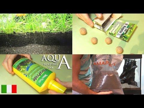 Acquatiche videolike - Terriccio fertile ...
