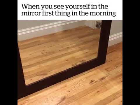 When You See Yourself In The Mirror First Thing In The Morning