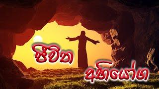 Supuwath Arana - 2019-08-21