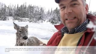聴覚障害者が凍死寸前の湖にハマってしまった鹿を救出♪