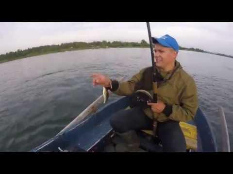 рыбалка на ангаре видео хариус