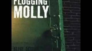 Watch Flogging Molly Never Met A Girl Like You Before video