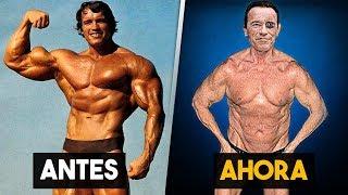 10 Cosas que no sabias de Arnold Schwarzenegger