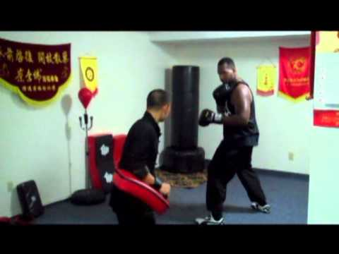 Choy Lee Fut San Shou training.wmv Image 1