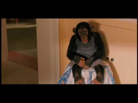 Touche pas  mon singe !, extrait de Walk Hard (2007)