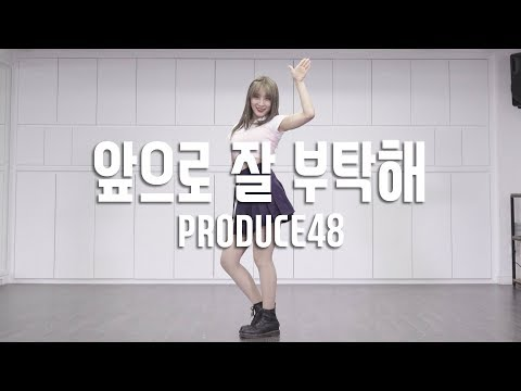 Download PRODUCE48 48  WE TOGETHER    Dance Cover  Cover by SolE Kim Mirror Mode