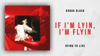 Kodak Black If I 39 M Lyin I 39 M Flyin Dying To Live