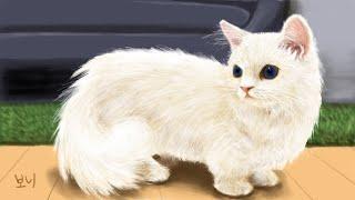 크림히어로즈 팬아트 - 라라 고양이 그리기 : Cream Heroes fan art - Painting LaLa | 보니 Bonnie