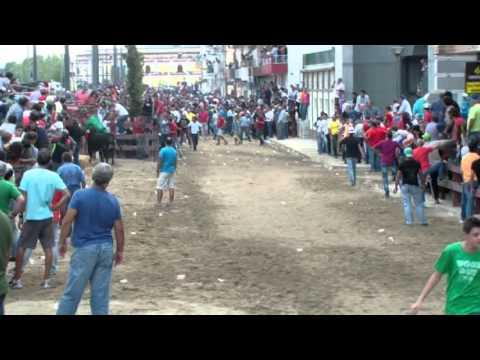 Esperas e Largadas Touros Feira de Outubro 2013 Vila Franca de Xira