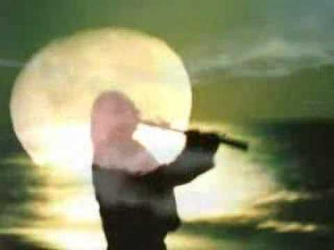 Loons in the Moonlight - John De Boer/Native American Flute Music Videos